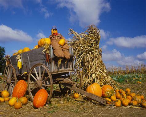 Fall Bargains by Hay Rides Activities Creative Spirits Bargains