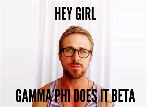 Greek Life Memes - 243 best gamma phi beta images on pinterest gamma phi