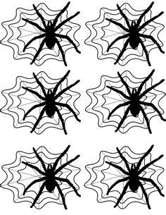 Aufkleber Für Auto Motorrad by 148 Best Spiders And Bugs Printables Images On
