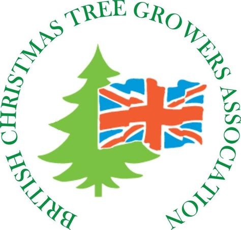 christmas trees newlands nursery and garden centre at