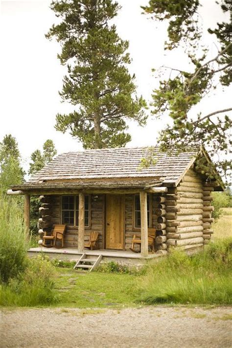 Log Cabin Labradors by 410 Best Images About Painting On Watercolors How To Paint And Painting On