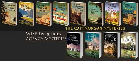 of the unsuitable suitor the a wise enquiries agency mystery books criminal minds sweet sixteen by cathy ace
