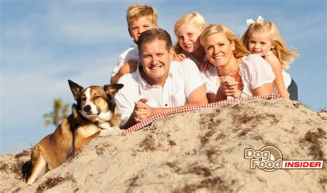 kid friendly breeds the top 5 family friendly breeds official