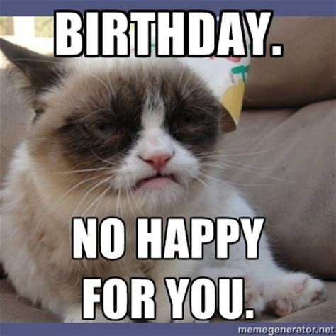 Grumpy Cat Meme Happy - happy birthday cat meme memes