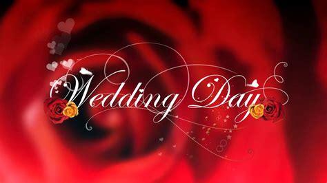 wedding hd background hd wedding hd style proshow