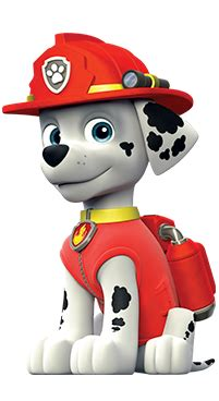 paw patrol characters paw patrol marshall and paw patrol badge paw patrol live race to the rescue characters who will