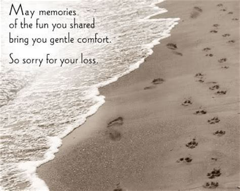 comfort you may memories of the fun your shared bring you gentle