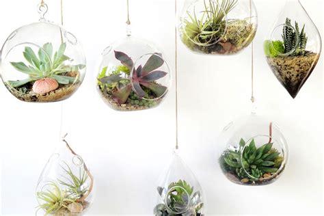 Home Decor Tips Interieurtrend Botanisch Met Heel Veel Terrarium