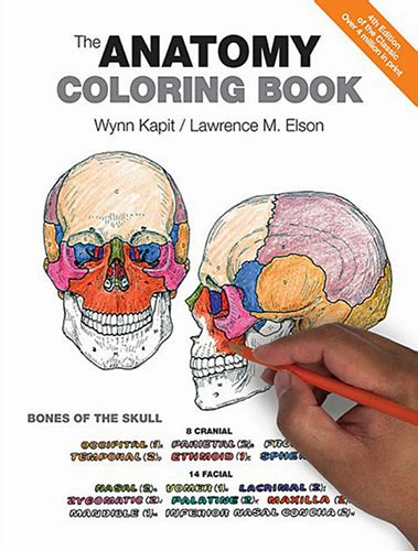 the anatomy coloring sic book the anatomy coloring book 4th edition pdf free