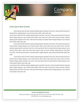free letterhead templates for adobe illustrator free letterhead templates in microsoft word adobe