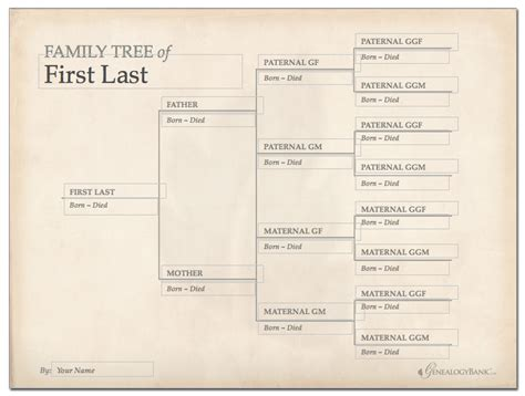 Family Tree Template Print Newhairstylesformen2014 Com | free printable family tree chart template decorations for