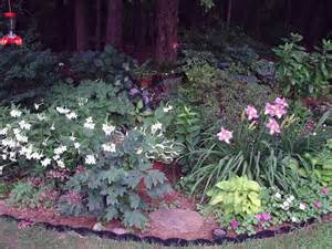 flowering shrubs for shaded areas what perennial flowers for partly to shady area