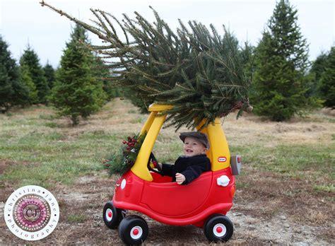 best 28 cincinnati christmas tree farm cincinnati
