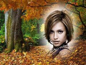 photo montage forest autumn pixiz