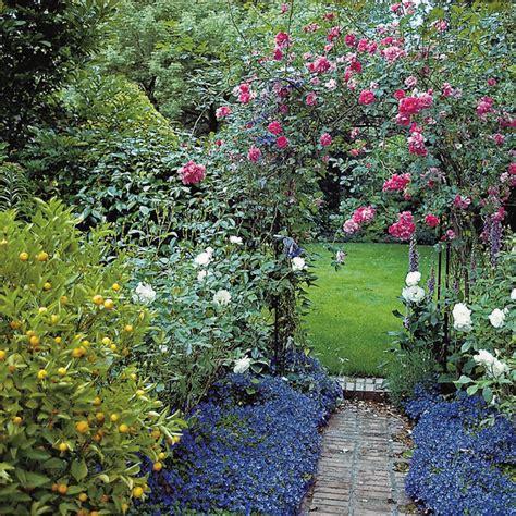 brighten your garden with colorful shrubs quarto homes