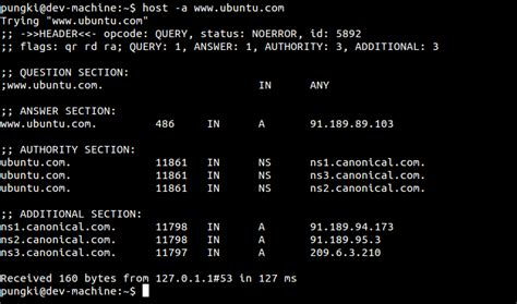 Dns Lookup Linux Best All Options For Dns Lookup Using Linux Host Command