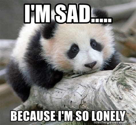 So Sad Meme - i m sad because i m so lonely sad panda meme