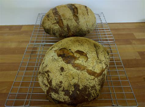 75 hydration starter tartine ish 77 hydration in the uk the fresh loaf