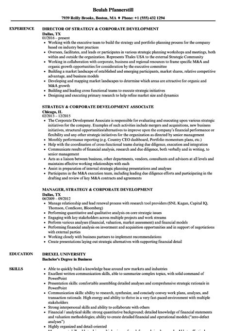 animation director free resume samples blue sky resumes