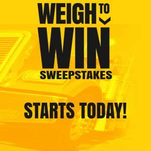 Who Won The Sweepstakes Today - weigh to win sweepstakes starts today cat scale