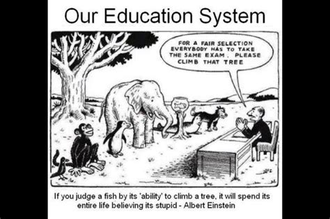 would you teach a fish to climb a tree a different take on with add adhd ocd and autism books pin by on