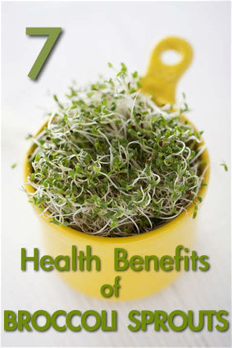 Broccoli Sprouts Helath Benefits Detox by 8 Health Benefits Of Thyme Eat This