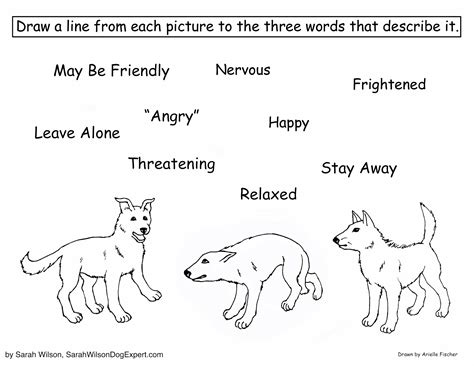 coloring pages service dogs dog body language coloring page for children