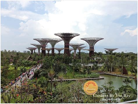 Gardens At South Bay by Cuisine Paradise Singapore Food Recipes Reviews