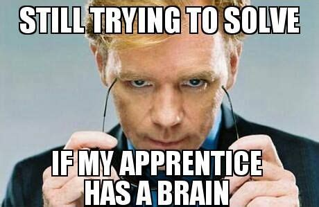 David Caruso Meme - the 32 best images about tradie funnies on pinterest you