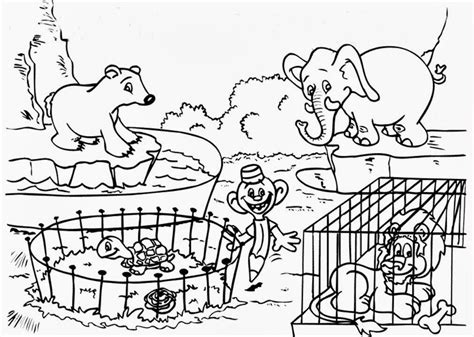 coloring page of zoo animals baby zoo animal coloring pages images pictures becuo