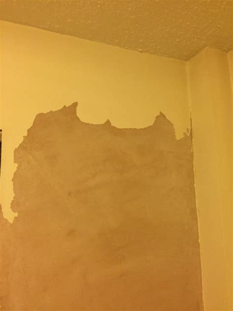 bathroom paint peeling off walls paint peeling off plaster diynot forums