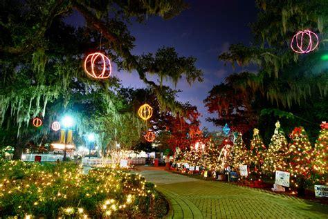 city park orleans lights lights in orleans city park