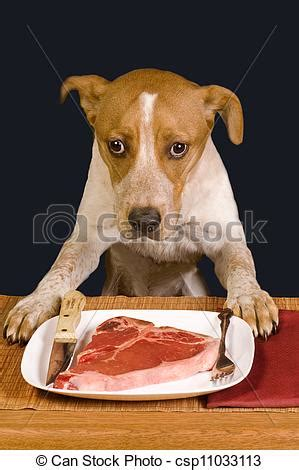 can dogs eat steak stock photography of dinner time ready to eat a big steak csp11033113