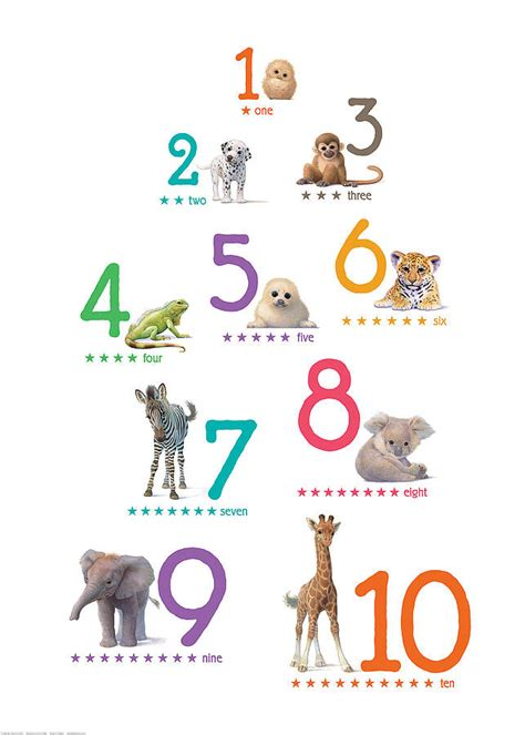 printable numbers with animals illustrated animals bright number print by little blue