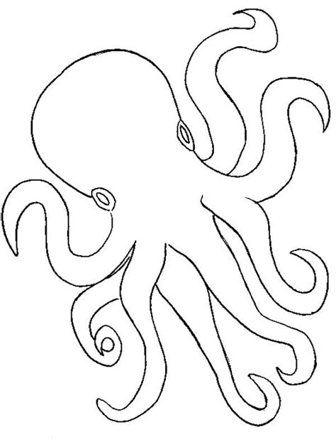 octopus template 652 best images about kp sea clip on