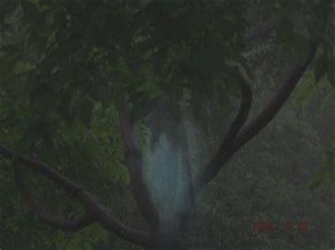 film hantu leak penakan hantu wewe gombel indonesia foto gambar