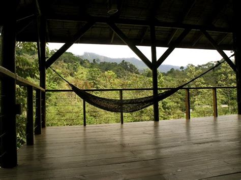 treehouse community love more fear less finca bellavista aka dreamland