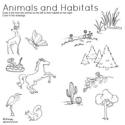 coloring pages of animals in their habitats animals and habitats matching worksheet kid crafts