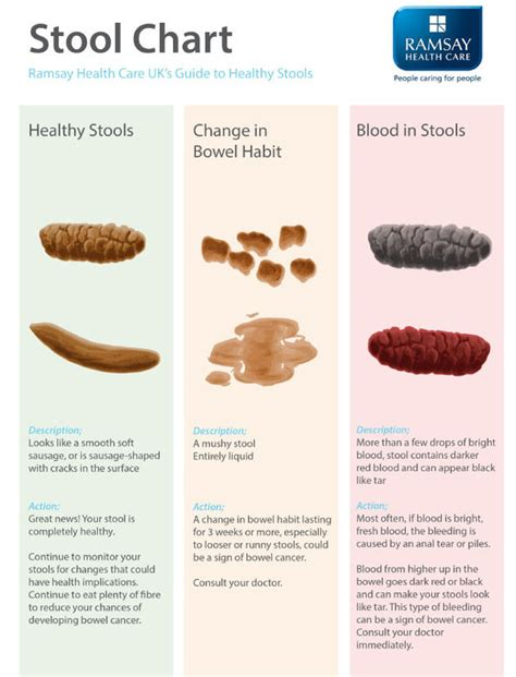 Stool Constipation by Is My Poo Normal Stool Reveals All About Your Health