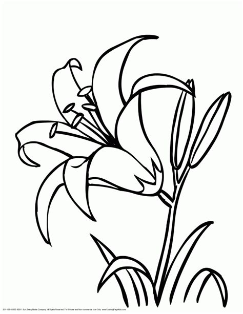 crayola coloring pages flowers crayola coloring pages online coloring home