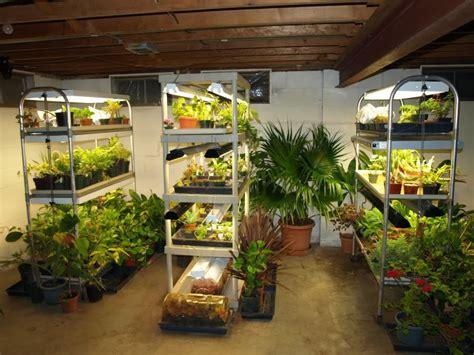 micro grow light garden small basement vegetable grow room google search
