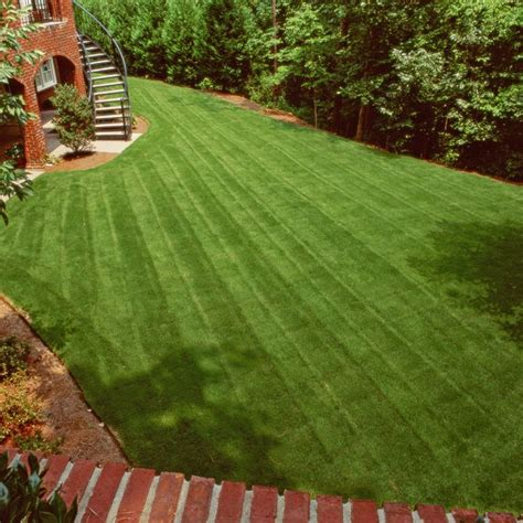weed control for a patchy lawn is it better to apply pre emergent