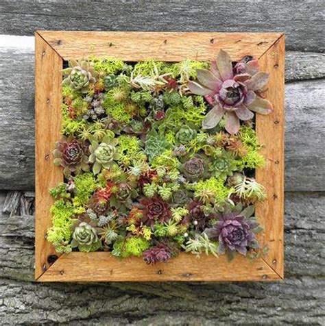 Living Wall Panel Outdoor Planter by Grovert Living Wall Panel Bg20 Zeal Planters