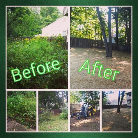 clean up backyard peters professional landscaping commercial residential