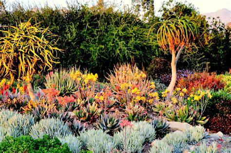 l a county arboretum botanic garden plant info where