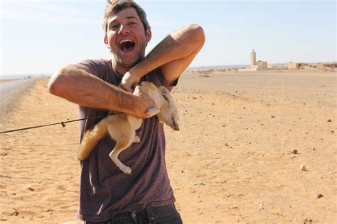 petting a petting a fennec fox in the desert