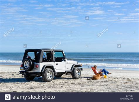 jeep wrangler beach young woman and her dog sitting by a jeep wrangler