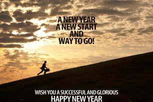 happy new year wiki 2016 celebration images pictures