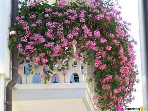 balcony flowers garden decoration idea for balcony home design and decor