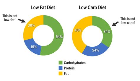 23 studies on low carb and low fat diets time to retire research on low carb vs low fat diets the never ending